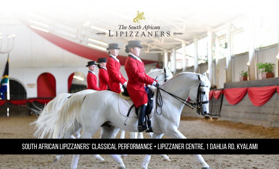 Classical Performances of the SA Lipizzaners